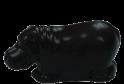 Hroch mini hořký